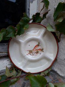 Assiette a compartiments carotte radis